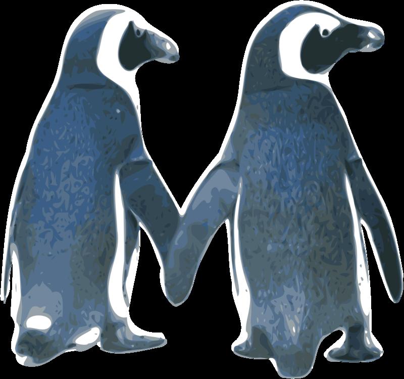 Flightless Bird,King Penguin,Animal Figure