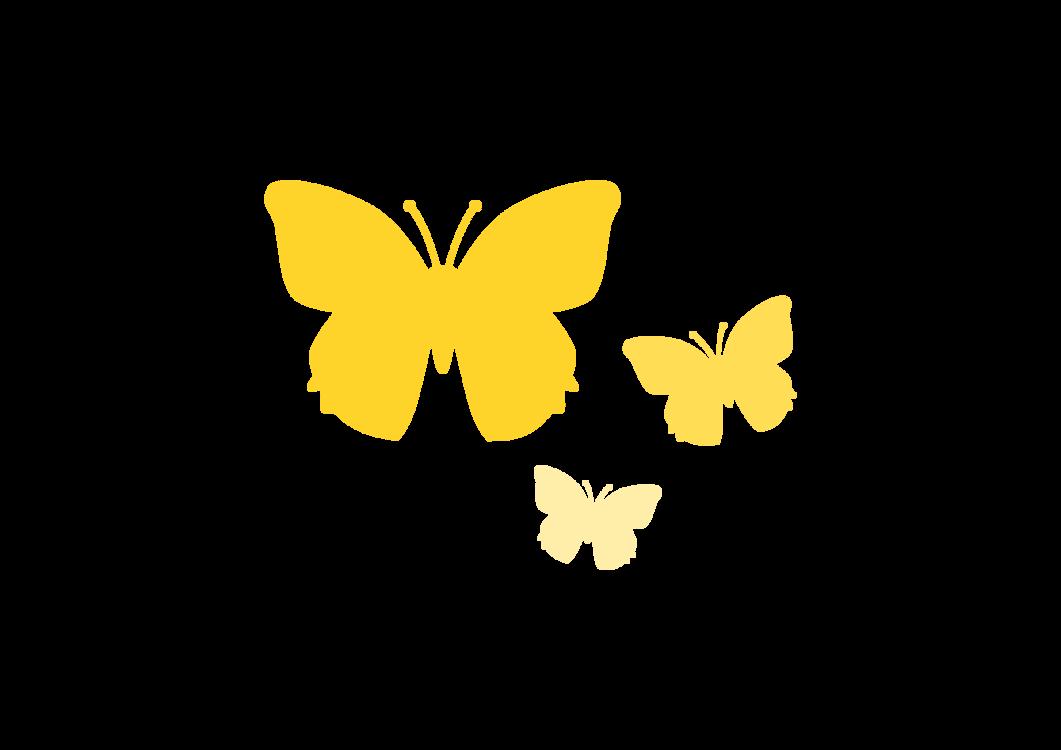 Butterfly,Petal,Pollinator