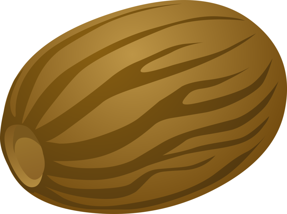 Food,Oval,Circle