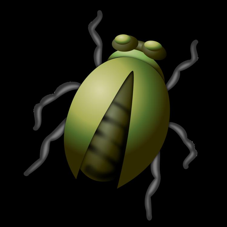 Honey Bee,Ladybird,Pollinator