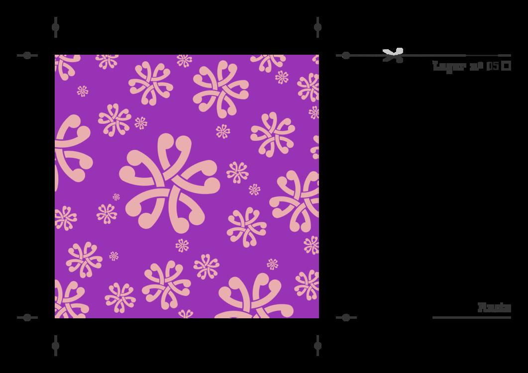 Petal,Flower,Symmetry