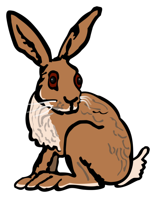 Wildlife,Rabits And Hares,Hare