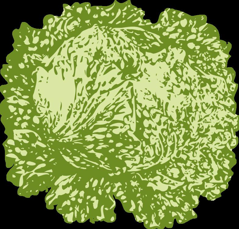 Flower,Leaf,Food