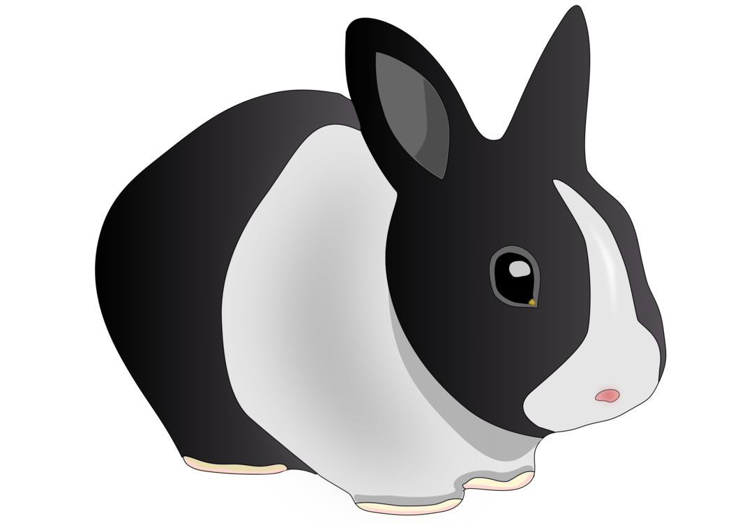 Rabits And Hares,Whiskers,Vertebrate