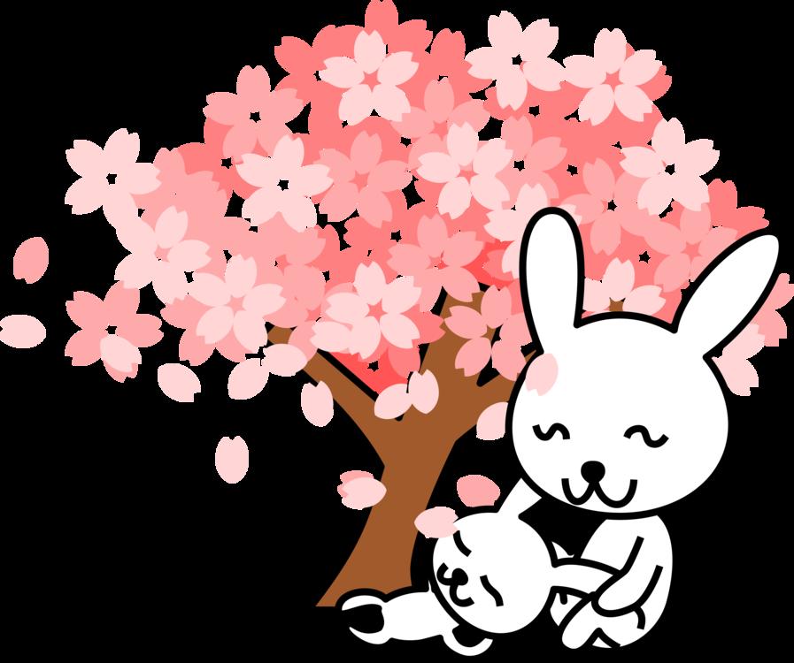 Pink,Heart,Flower