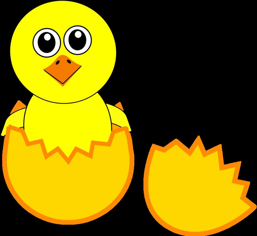 Beak,Yellow,Smile