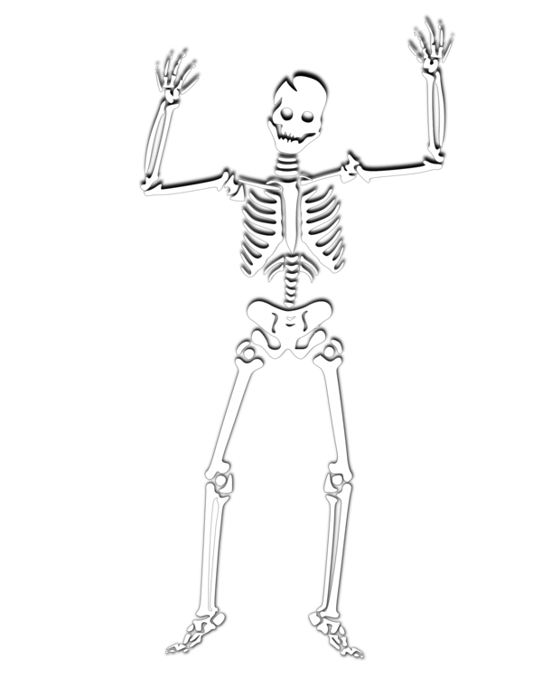 Halloween Human Skeleton Skull Coloring Book Free Commercial Clipart