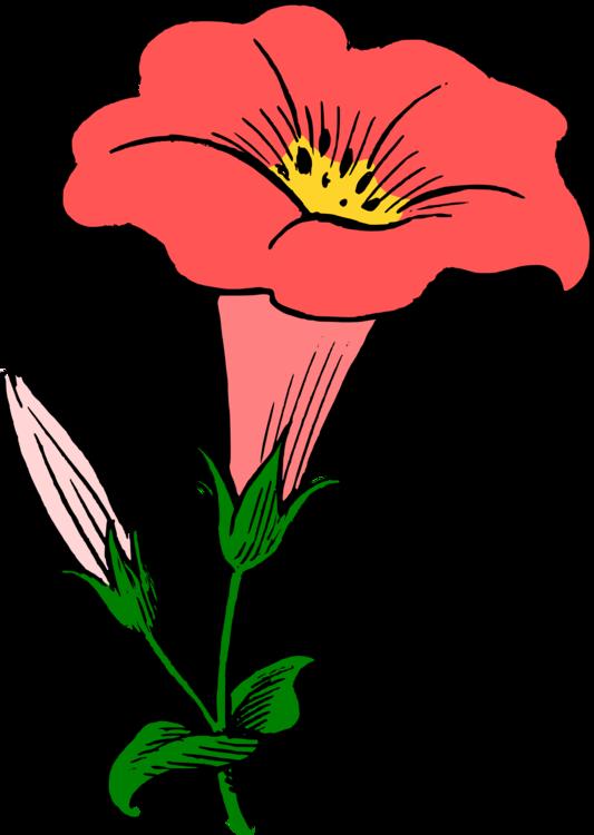 Plant,Flora,Art