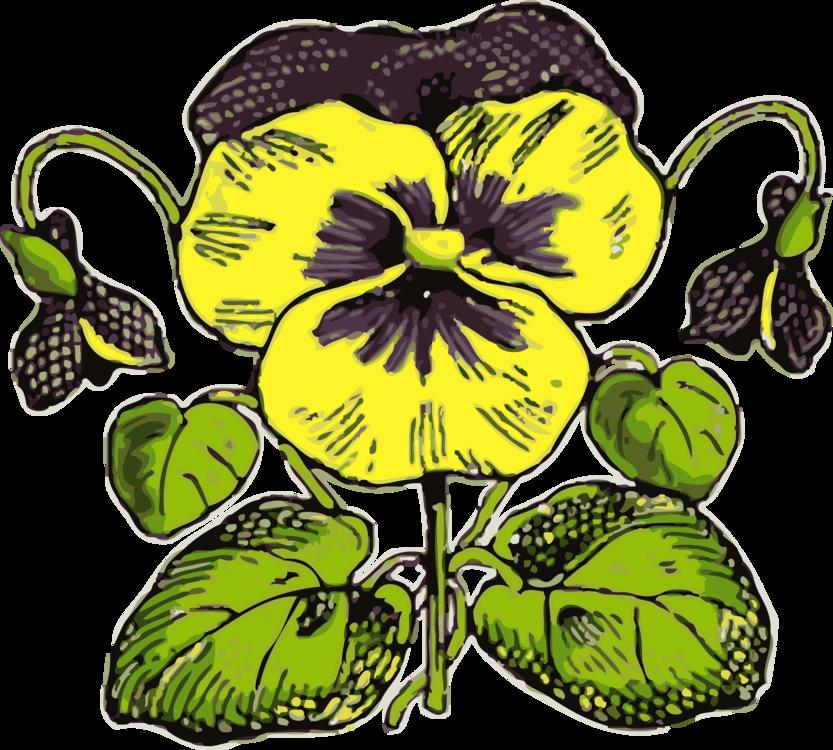 Plant,Flora,Food