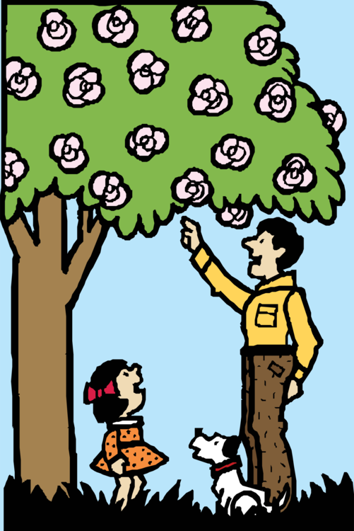 Human Behavior,Plant,Flower
