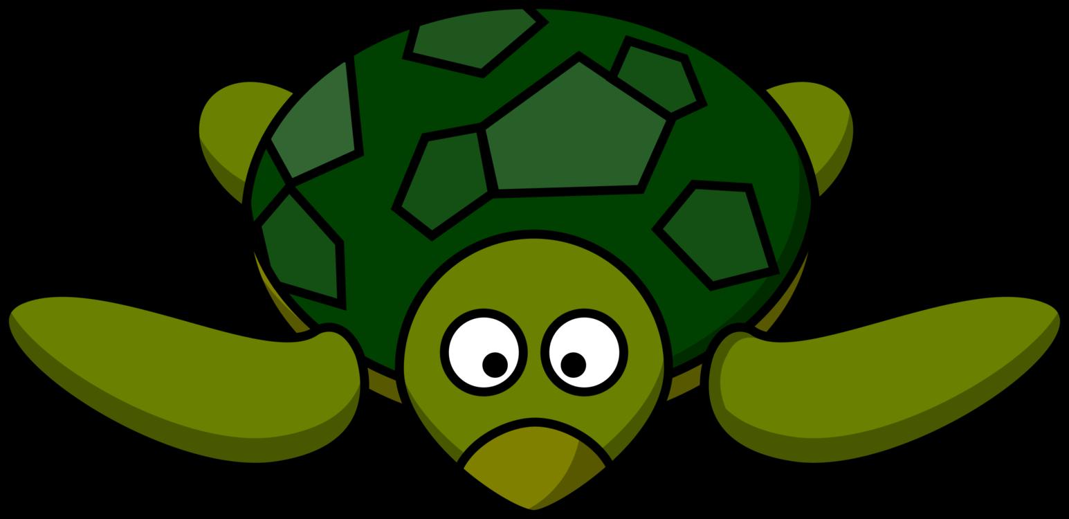 Turtle,Plant,Leaf