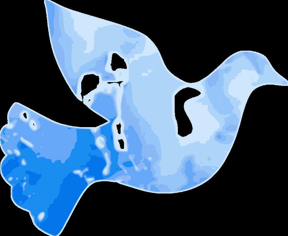 Blue,Water,Beak