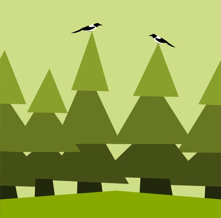 Triangle,Grass,Leaf