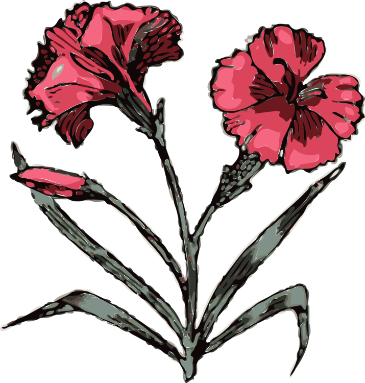 Download Carnation Computer Icons Drawing