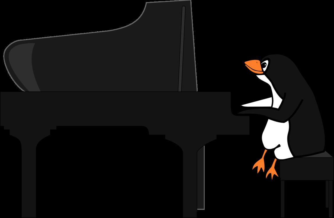 Angle,Keyboard,Piano