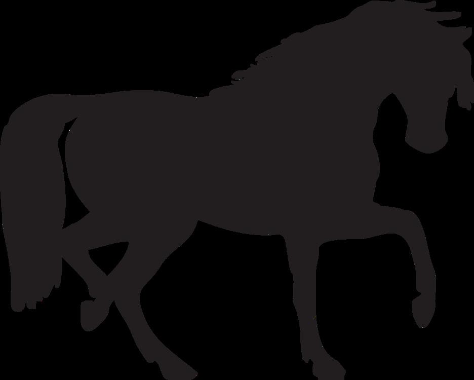 Pony,Horse,Silhouette