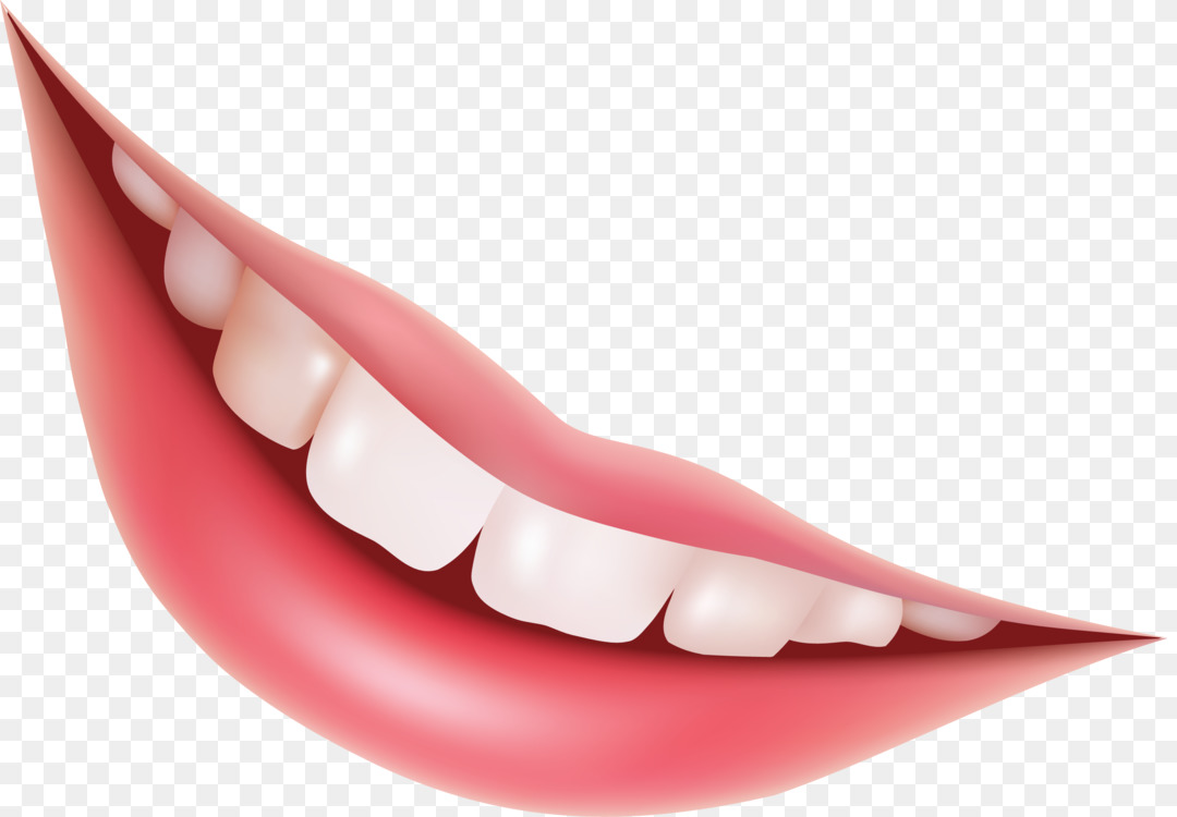 Human Tooth Smile Lip Mouth Free Png Image Tooth Human Tooth