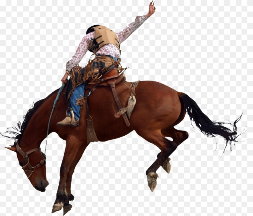 75+ Cowboy On A Horse Picture