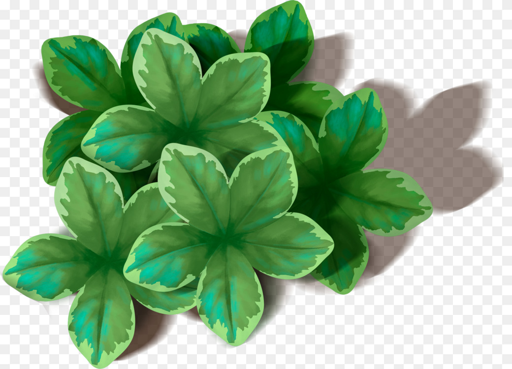 Green Leaf Petal Food chain Image file formats