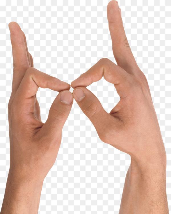 Hand Upper Limb Anatomy Finger Computer Icons Free Png Image Thumb