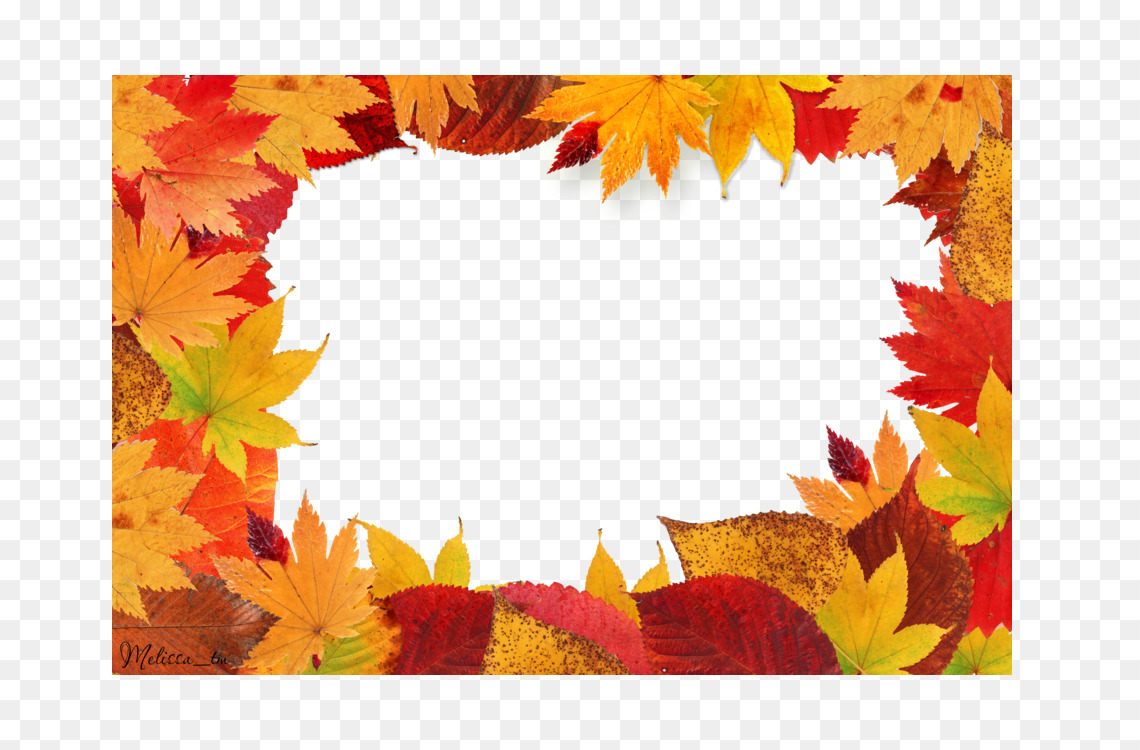 Picture Frames Autumn leaf color Free PNG Image - Picture Frames ...