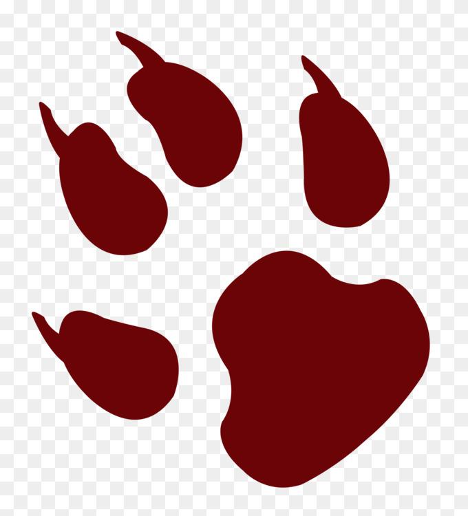 Footprint Cat Paw Cheetah
