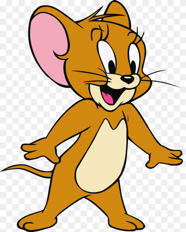 Tom Cat Jerry Mouse Nibbles Tom and Jerry Cartoon