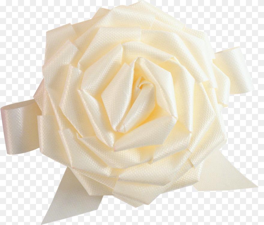 Flower,Peach,Rose Order