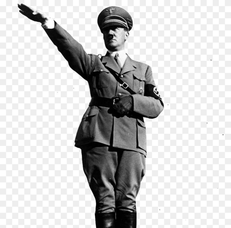 Image result for nazi salute
