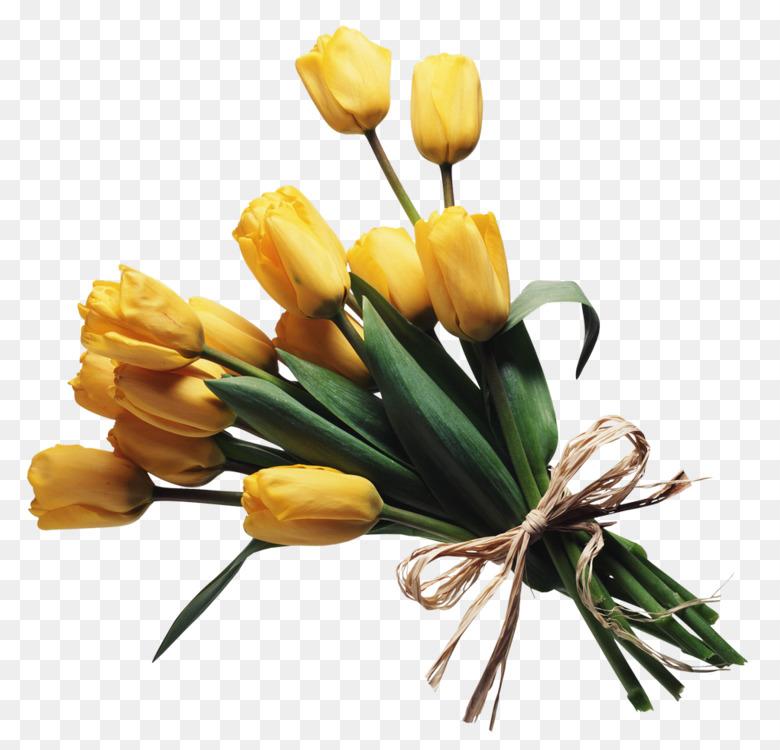Flower bouquet Cut flowers Floral design Rose Free PNG Image ...