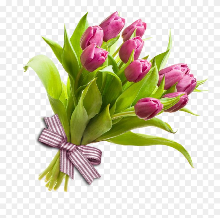 Flower bouquet Tulip Rose Cut flowers Free PNG Image - Flower ...