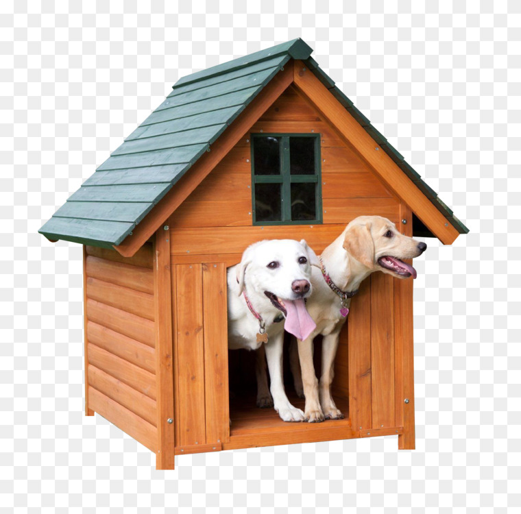 Dog Houses Kennel Cat