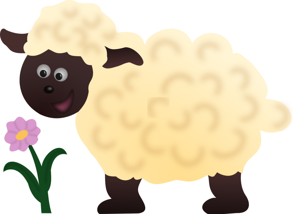 Sheep,Livestock,Food