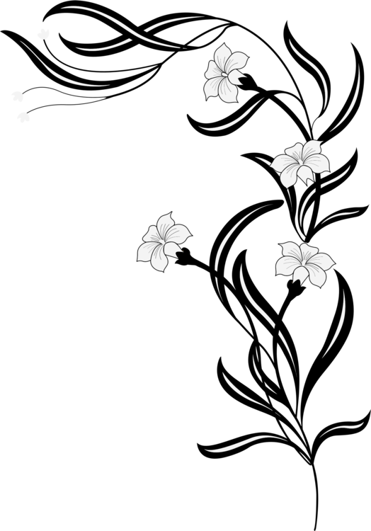 Flower drawing floral design black and white free commercial clipart flower drawing floral design black and white mightylinksfo