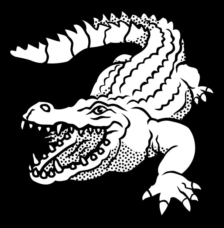 Reptile,Art,Monochrome Photography