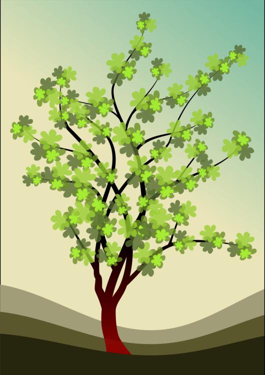 Plant,Spring,Tree