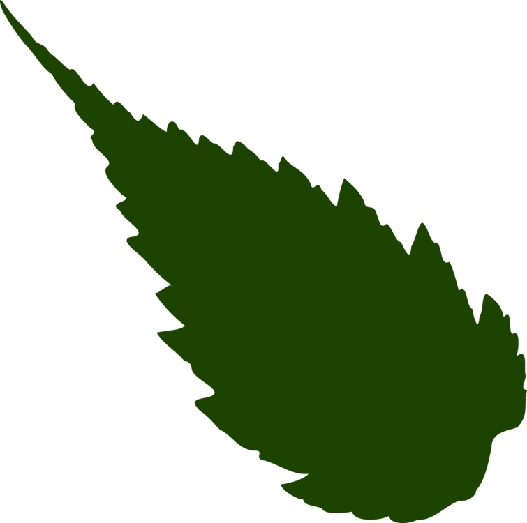 Maple Leaf Neem Tree Computer Icons Cc0 Plant Leaf Tree Cc0 Free