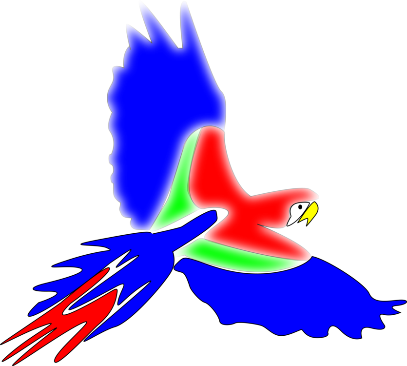 Macaw,Parrot,Fish