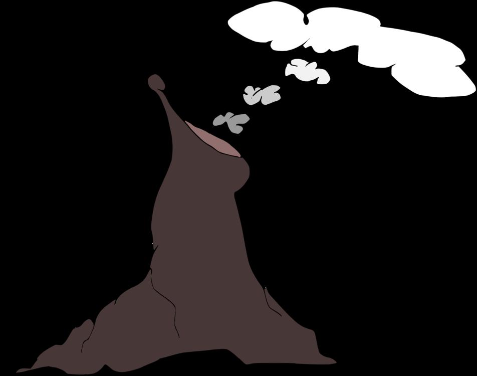 Sea Lion Diagram Explained Wiring Diagrams