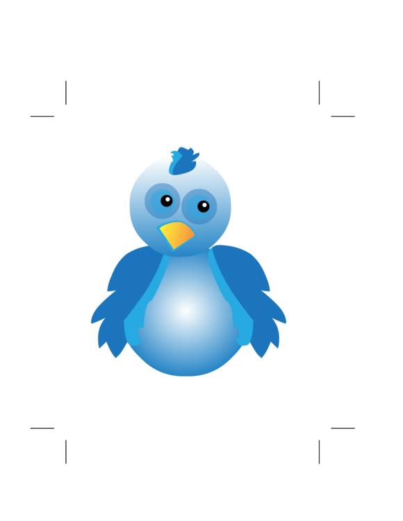 Flightless Bird,Water Bird,Wing