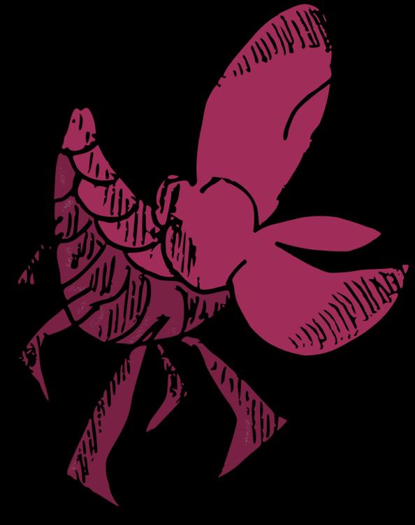 Art,Moths And Butterflies,Magenta