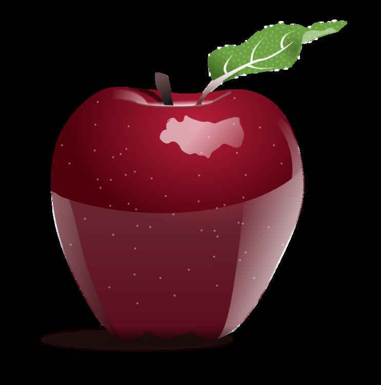 Plant,Apple,Mcintosh