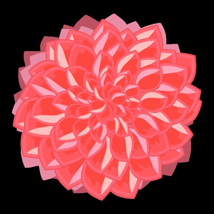 Flower,Peach,Petal