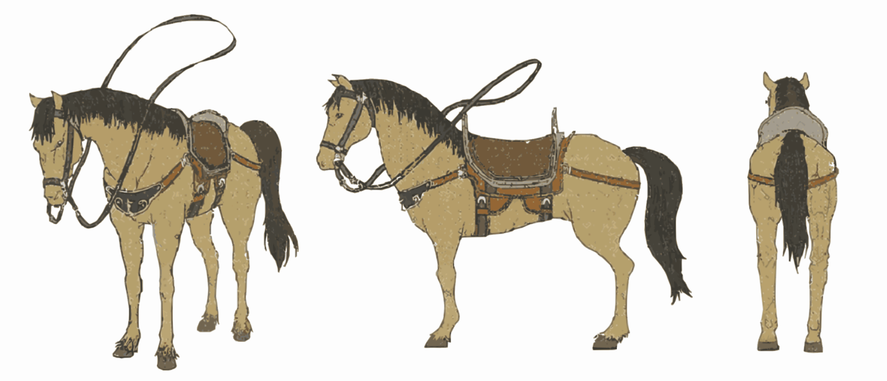 Horse,Chariot,Pack Animal