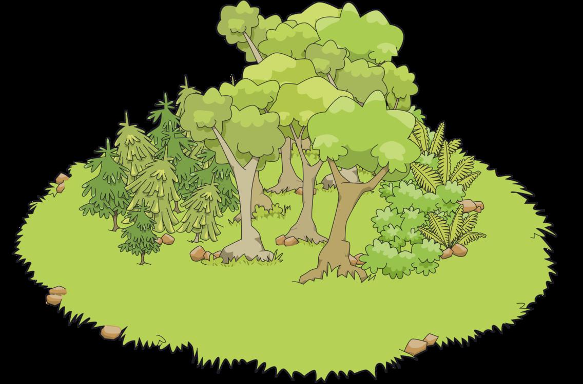 Biome,Plant,Flora