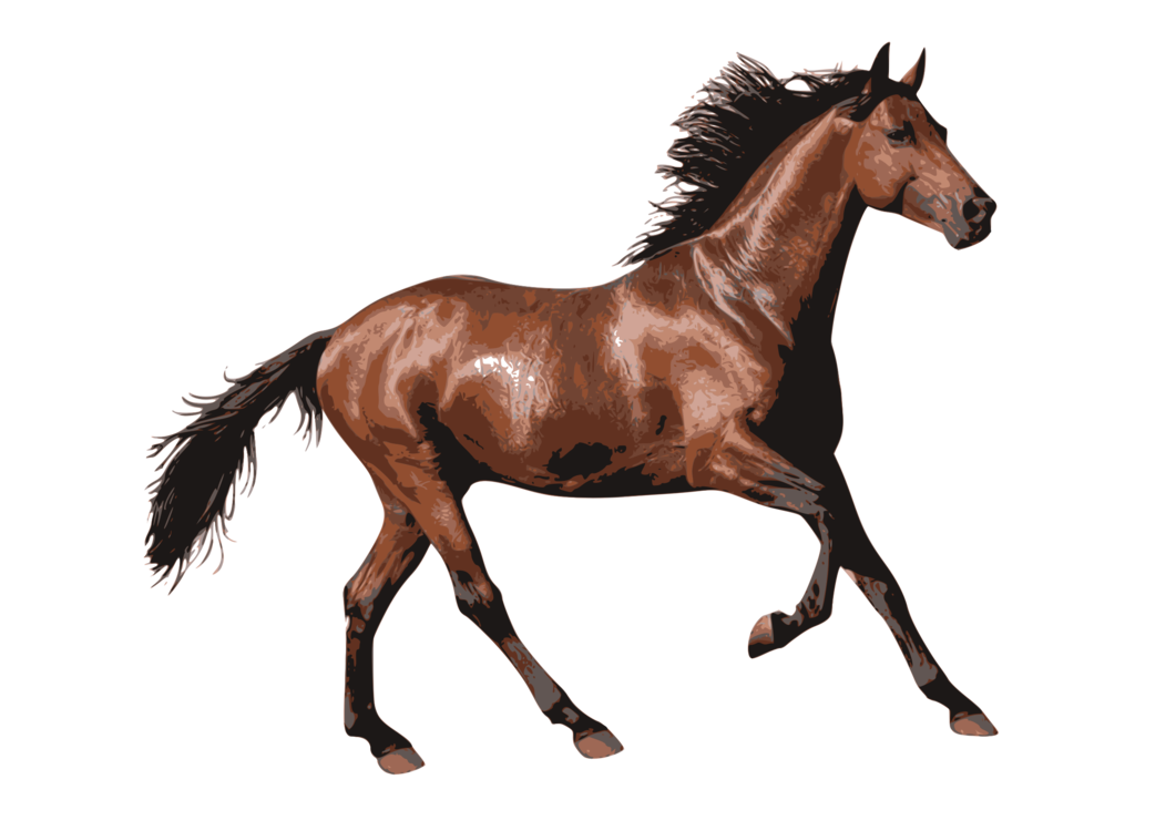 Foal Mare Horse Png Clipart Royalty Free Svg Png