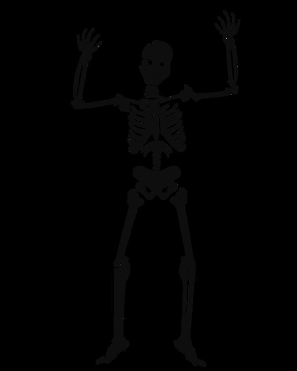 Standing,Human Behavior,Bone
