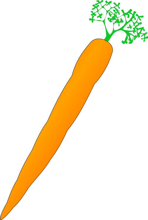 Food,Orange,Carrot