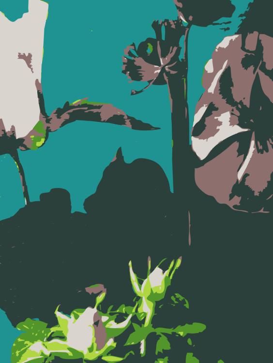 Computer Wallpaper,Visual Arts,Plant