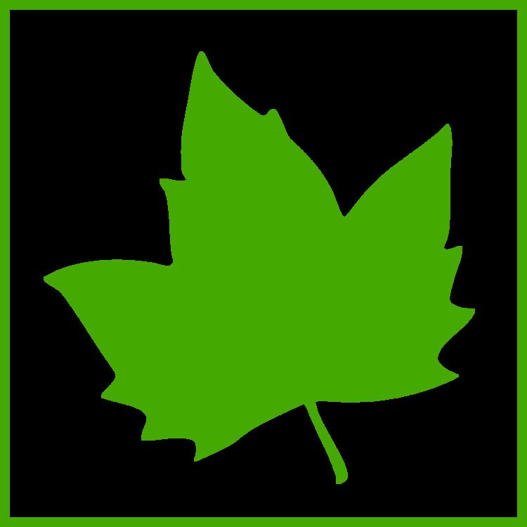Plant,Leaf,Symmetry